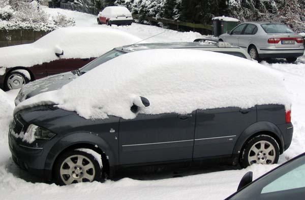 Schnee.jpg.7c9d22d01eb99a95f1003d677ab3a84b.jpg