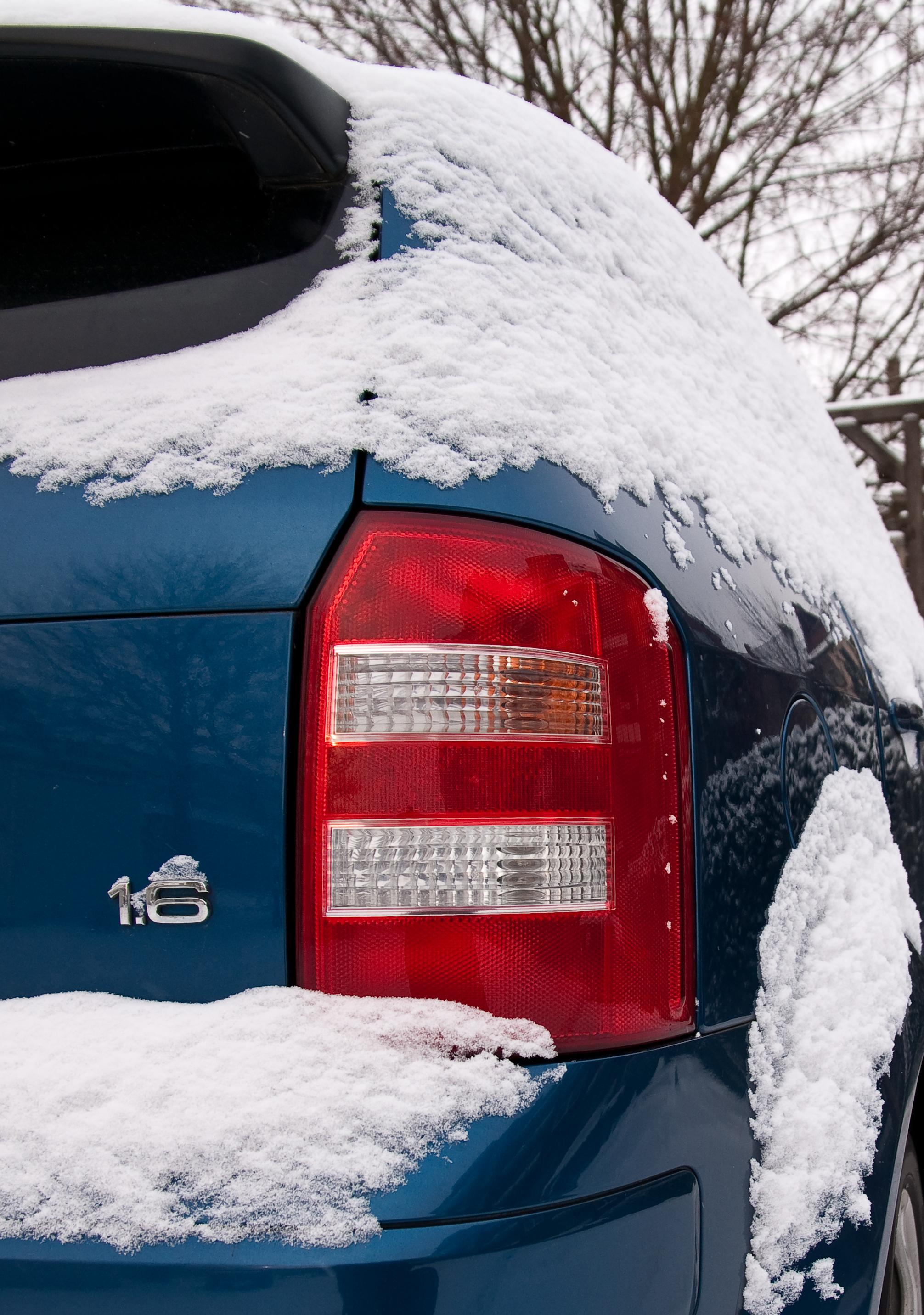 Winterliche A2 Details vom Fuchs