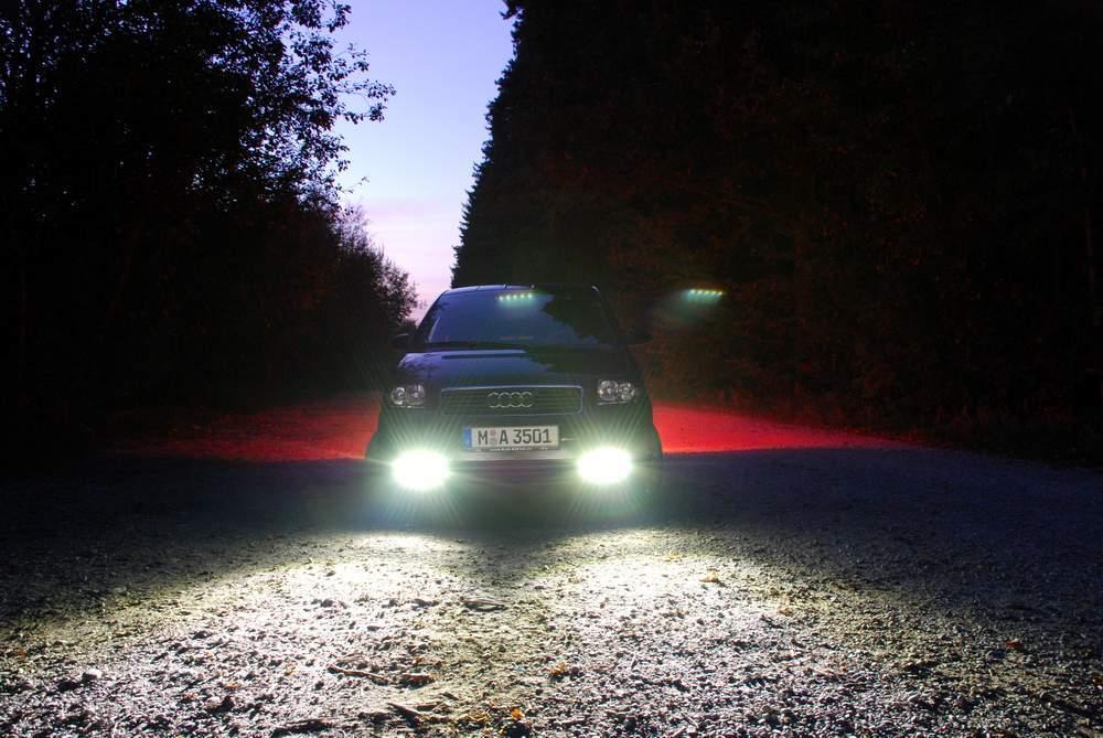 Nachts im Wald