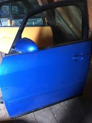Fahrertür_blau.JPG