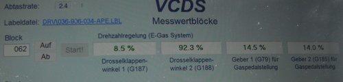 Gaspedal 8Z1721523 Werte Leerlauf - Stand - unbetätigt.jpg